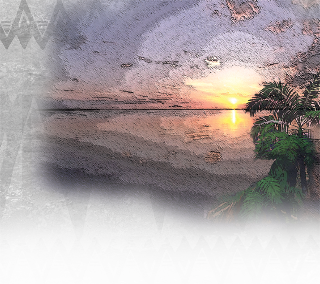 Hawaiian Music Background